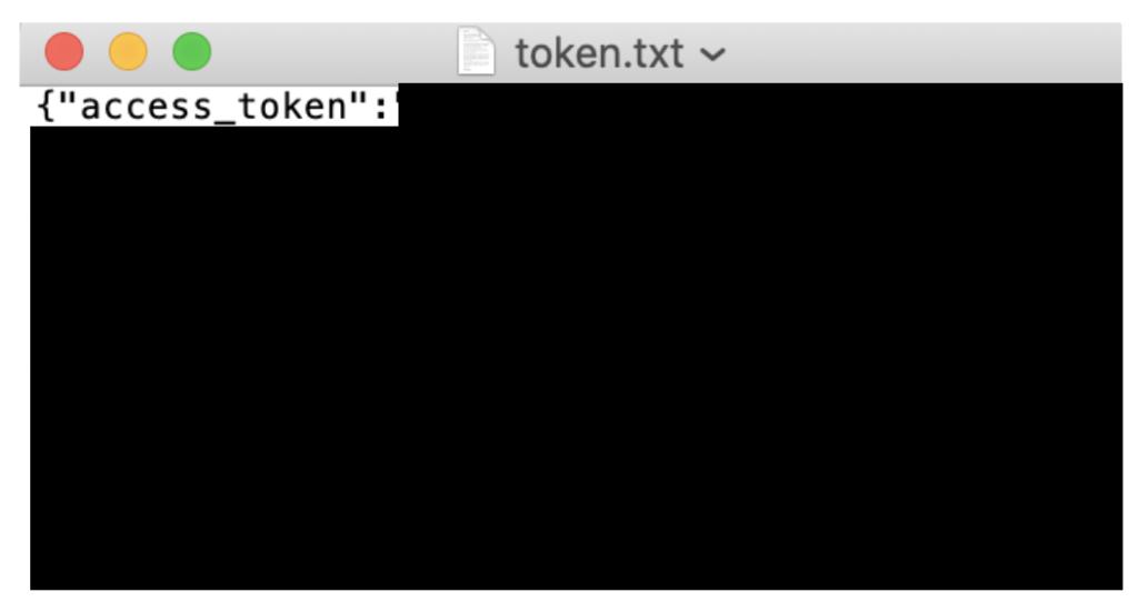 token.txtの保存